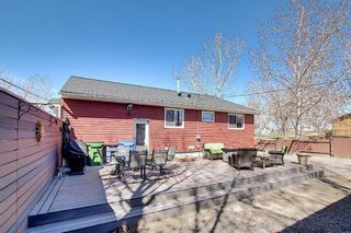 Photo 34: 11368 86 Street SE: Calgary Detached for sale : MLS®# A1100969