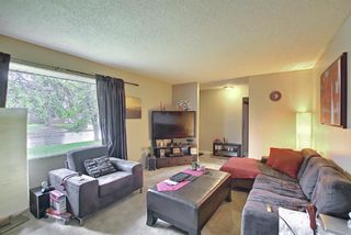 Photo 4: 4747 Memorial Drive SE in Calgary: Forest Heights Detached for sale : MLS®# A1118598