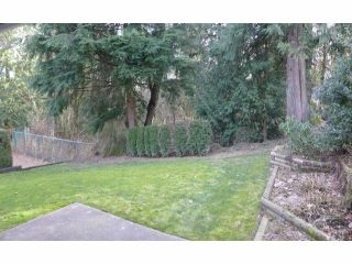 "Photo 13: 13 33020 MACLURE Road in Abbotsford: Central Abbotsford Townhouse for sale in ""WILLBAND CREEK ESTATES"" : MLS®# F1404024"