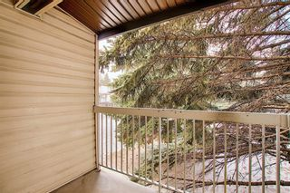 Photo 23: 64 3705 Fonda Way SE in Calgary: Forest Heights Apartment for sale : MLS®# A1065357