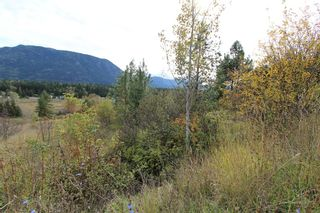 Photo 3: 36 2481 Squilax Anglemont Road in Lee Creek: North Shuswap Land Only for sale (Shuswap)  : MLS®# 10072100