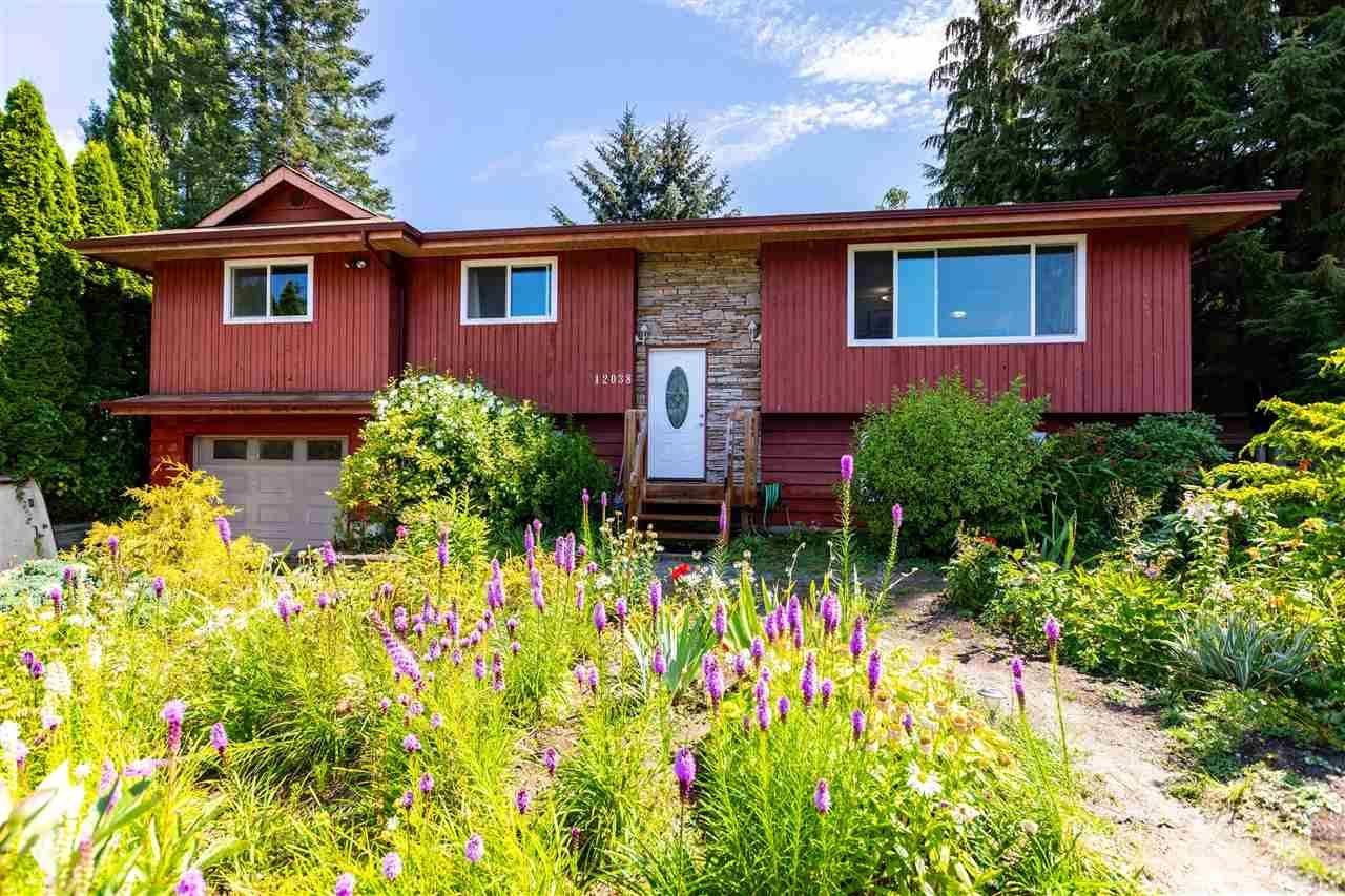Main Photo: 12038 212 Street in Maple Ridge: Northwest Maple Ridge House for sale : MLS®# R2482553