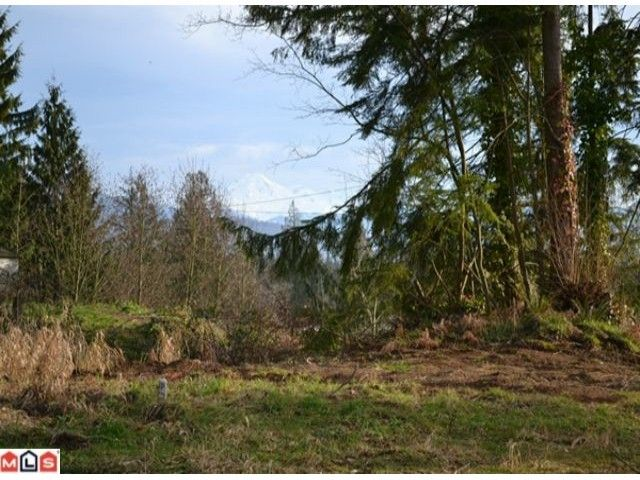 Main Photo: 31686 BENCH Avenue in Mission: Mission BC Land for sale : MLS®# F1201765