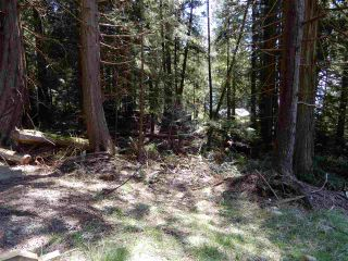 "Photo 8: LOT 3 FORIN ROAD: Keats Island Land for sale in ""EASTBOURNE"" (Sunshine Coast)  : MLS®# R2459870"