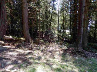 "Photo 8: LOT 3 FORIN ROAD: Keats Island Land for sale in ""EASTBOURNE"" (Sunshine Coast)  : MLS®# R2459870"