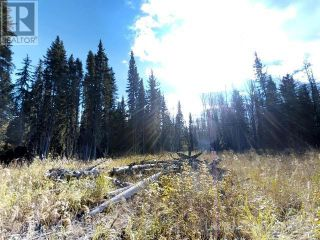 Photo 6: 53018 RANGE RD 175 in Rural Yellowhead County: Vacant Land for sale : MLS®# AW38443
