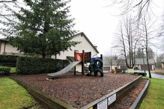Photo 19: 3 23151 HANEY BYPASS in Maple Ridge: Cottonwood MR Townhouse for sale : MLS®# R2231499