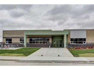 Photo 47: 43 BRIGHTONSTONE Grove SE in Calgary: New Brighton House for sale : MLS®# C4085071
