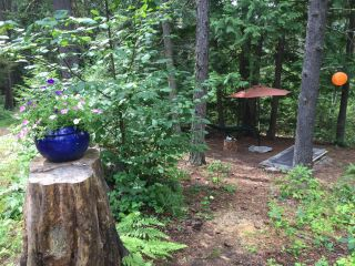 Photo 8: 1969 SANDY ROAD in Castlegar: Vacant Land for sale : MLS®# 2461033
