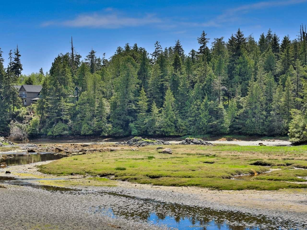 Photo 80: Photos: 1068 Helen Rd in UCLUELET: PA Ucluelet House for sale (Port Alberni)  : MLS®# 840350