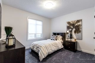 Photo 14: 59 Redspur Drive: St. Albert House for sale : MLS®# E4265918