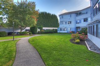 Photo 31: 316 3931 Shelbourne St in : SE Mt Tolmie Condo for sale (Saanich East)  : MLS®# 888000