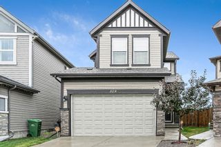 Photo 1: 319 Walden Mews SE in Calgary: Walden Detached for sale : MLS®# A1139495