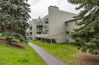 Photo 27: 2135 70 Glamis Drive SW in Calgary: Glamorgan Apartment for sale : MLS®# A1118872