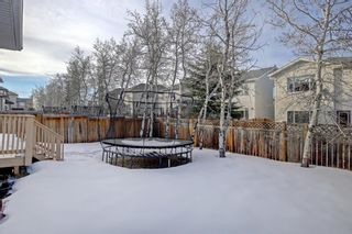 Photo 40: 26 West Cedar Place SW in Calgary: West Springs Detached for sale : MLS®# A1076093