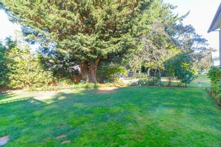 Photo 29: 523 Brough Pl in : Co Royal Roads House for sale (Colwood)  : MLS®# 851406