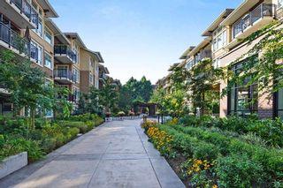 Photo 23: 409 1975 154 STREET in Surrey: King George Corridor Condo for sale (South Surrey White Rock)  : MLS®# R2466008