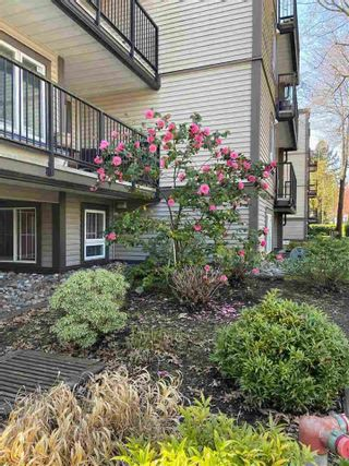 """Photo 27: 101 1040 E BROADWAY in Vancouver: Mount Pleasant VE Condo for sale in """"Mariner Mews"""" (Vancouver East)  : MLS®# R2618555"""