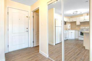 Photo 6: 7335 SOUTH TERWILLEGAR Drive in Edmonton: Zone 14 Condo for sale : MLS®# E4252855