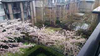 """Photo 5: 508 7478 BYRNEPARK Walk in Burnaby: South Slope Condo for sale in """"GREEN"""" (Burnaby South)  : MLS®# R2426563"""
