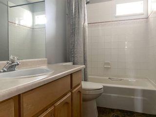 Photo 17: 20126 WHARF Street in Maple Ridge: Southwest Maple Ridge House for sale : MLS®# R2599414