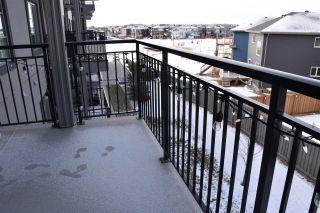 Photo 22: 337 1008 ROSENTHAL Boulevard in Edmonton: Zone 58 Condo for sale : MLS®# E4226292