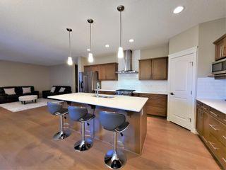 Photo 10: 812 177 Street in Edmonton: Zone 56 House for sale : MLS®# E4254520