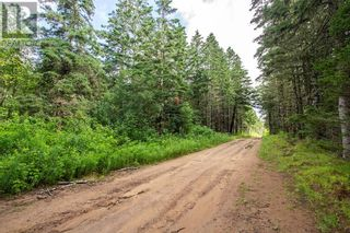 Photo 9: Lots Brooklyn RD in Midgic: Vacant Land for sale : MLS®# M136510