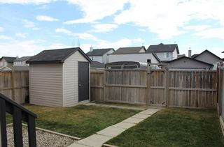 Photo 25: 171 SILVERADO Way SW in Calgary: Silverado House for sale : MLS®# C4172386