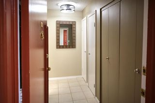 Photo 17: 55C 231 Heritage Drive SE in Calgary: Acadia Apartment for sale : MLS®# A1144362
