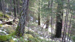 Photo 21: Lot B Mt. Matheson Rd in : Sk East Sooke Land for sale (Sooke)  : MLS®# 866391