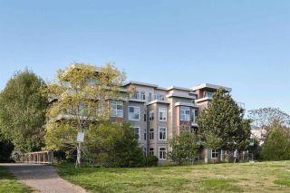 "Photo 7: 131 5700 ANDREWS Road in Richmond: Steveston South Condo for sale in ""River's Reach"" : MLS®# R2580300"