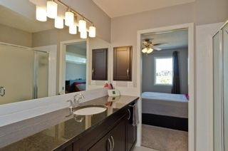 Photo 27: 160 COPPERSTONE Drive SE in Calgary: Copperfield Detached for sale : MLS®# A1016584