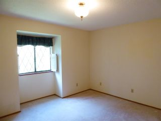 Photo 14: 8020 GILLEY Avenue in Burnaby: South Slope House for sale (Burnaby South)  : MLS®# R2520338