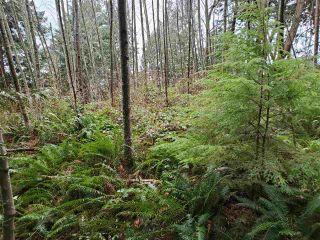 Photo 20: Lot 1 DL 3043: Keats Island Land for sale (Sunshine Coast)  : MLS®# R2554223