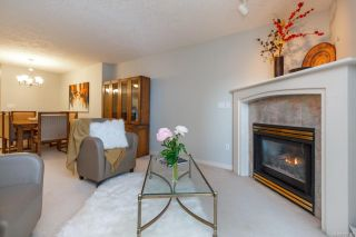 Photo 6: 206 1687 Poplar Ave in Saanich: SE Mt Tolmie Condo for sale (Saanich East)  : MLS®# 840047
