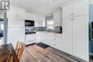 Photo 4: 48 Hussey Drive in St. John's: House for sale : MLS®# 1235960
