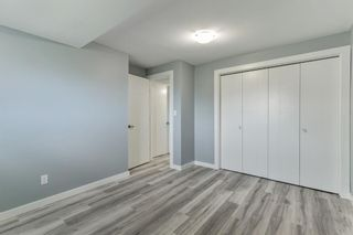 Photo 33: 23 Erin Meadows Court SE in Calgary: Erin Woods Detached for sale : MLS®# A1146245