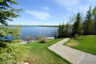 Photo 20: 13767 GOLF COURSE Road: Charlie Lake Manufactured Home for sale (Fort St. John (Zone 60))  : MLS®# R2062557