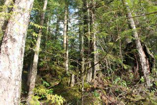 "Photo 9: LOT D 5680 CARMEL Place in Sechelt: Sechelt District Land for sale in ""TUWANEK"" (Sunshine Coast)  : MLS®# R2524461"