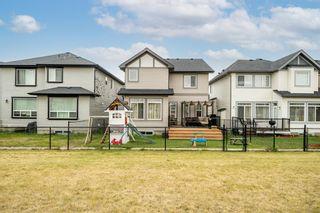 Photo 39: 60 Skyview Shores Gardens NE in Calgary: Skyview Ranch Detached for sale : MLS®# A1132367