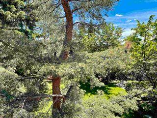 Photo 45: 12433 28 Avenue in Edmonton: Zone 16 House for sale : MLS®# E4265353