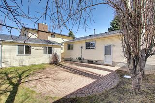 Photo 39: 136 Brabourne Road SW in Calgary: Braeside Detached for sale : MLS®# A1097410