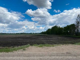 Photo 8: NW 34-49-27-W4 none: Rural Leduc County Rural Land/Vacant Lot for sale : MLS®# E4247276