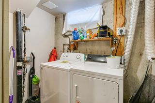 Photo 15: 168 Dover Meadow Close SE in Calgary: Dover Detached for sale : MLS®# A1082428