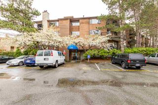 "Photo 24: 206 7291 MOFFATT Road in Richmond: Brighouse South Condo for sale in ""DORCHESTER CIRCLE"" : MLS®# R2571915"