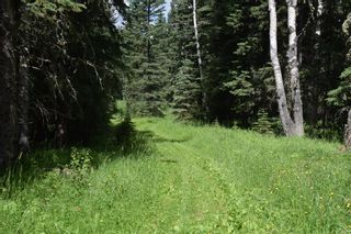 Photo 16: 7350 584 highway: Rural Mountain View County Detached for sale : MLS®# A1101573