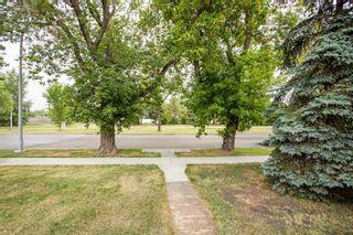 Photo 3: 9853 68 Avenue in Edmonton: Zone 17 House for sale : MLS®# E4262813