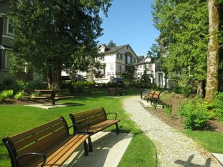 Photo 36: 44 14377 60 AVENUE in Surrey: Sullivan Station Townhouse for sale ()  : MLS®# R2099824