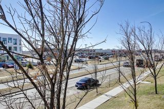 Photo 23: 215 7210 80 Avenue NE in Calgary: Saddle Ridge Apartment for sale : MLS®# A1091258
